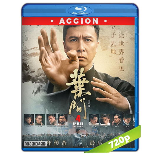 Ip Man 4: El Final 2019 1080p BRrip Subtitulada