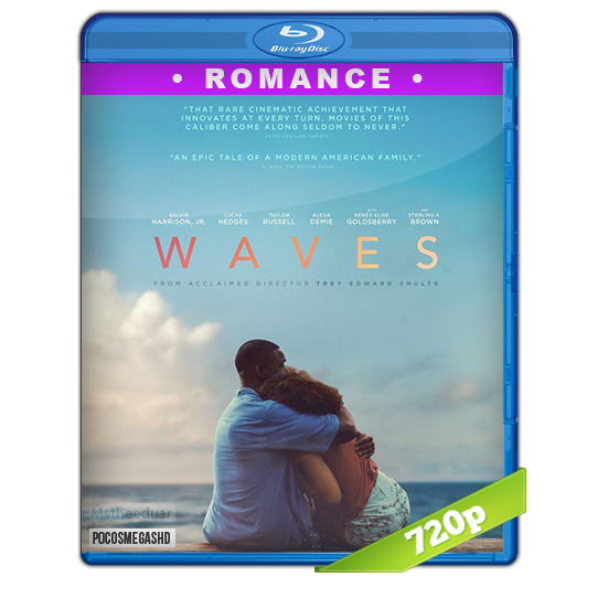 Waves 2019 720p BRrip Dual Latino